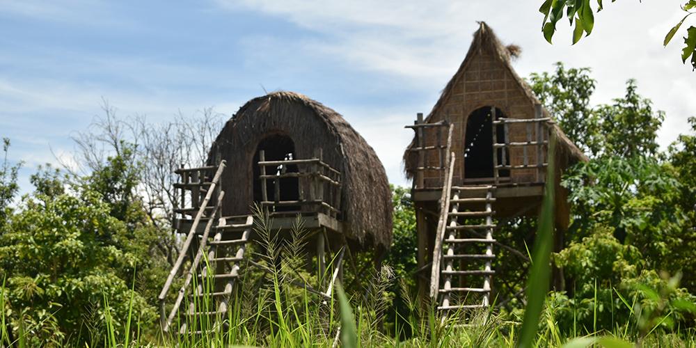 Farmers' houses